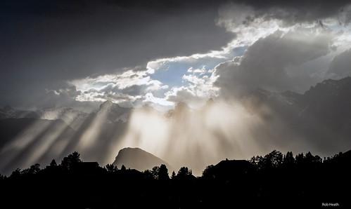 「世の光」が照らす未来