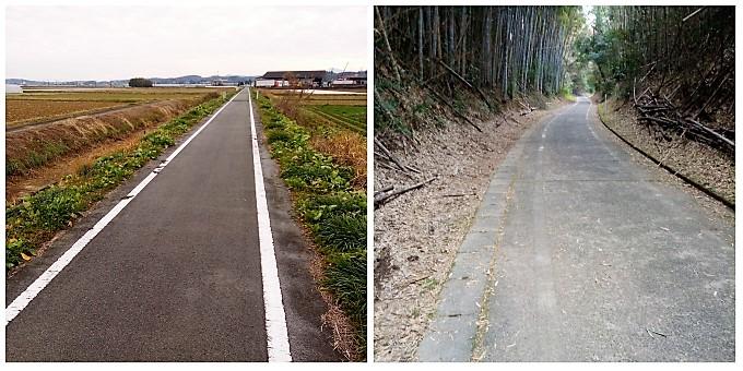 (左)平野を一直線に走る、(右)薄暗い竹林の中